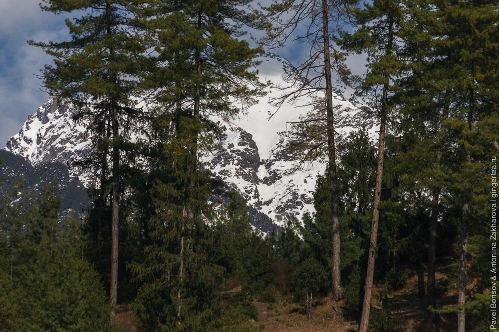 деревня Нагар в Индийских Гималаях