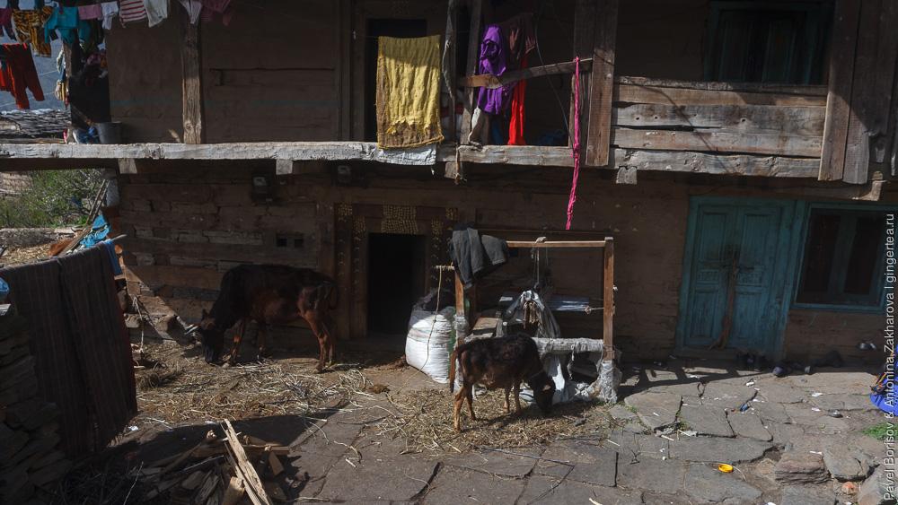 деревня Румсу в Индийских Гималаях