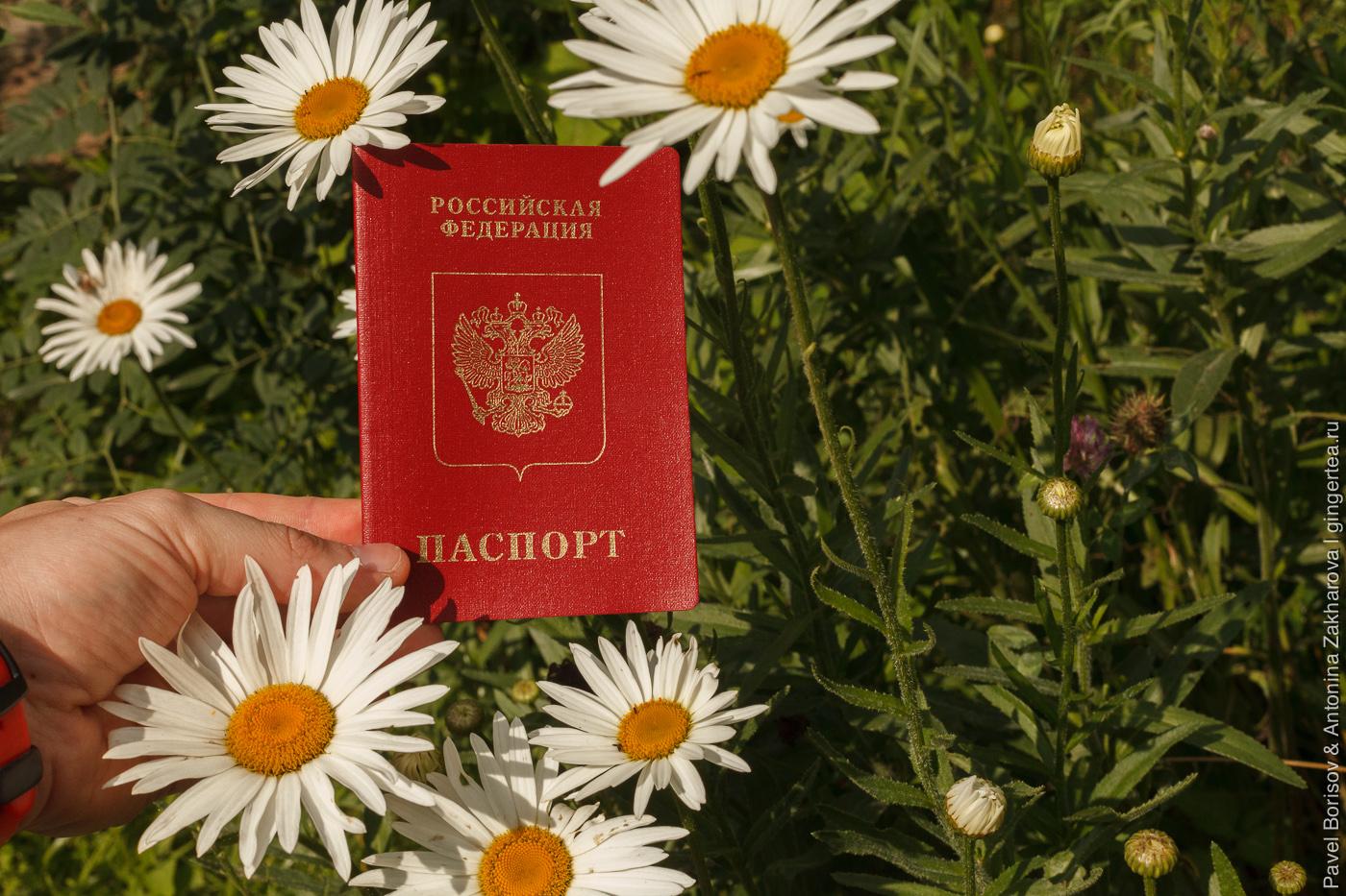 Как зарегистрировать новорожденного за границей, получить загранпаспорт и разрешение на выезд. Наш опыт в Индии.