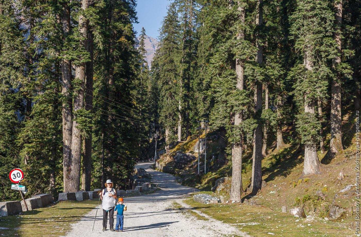 тропа через перевал Хамта в хребте Пир-Панджал, Индийские Гималаи