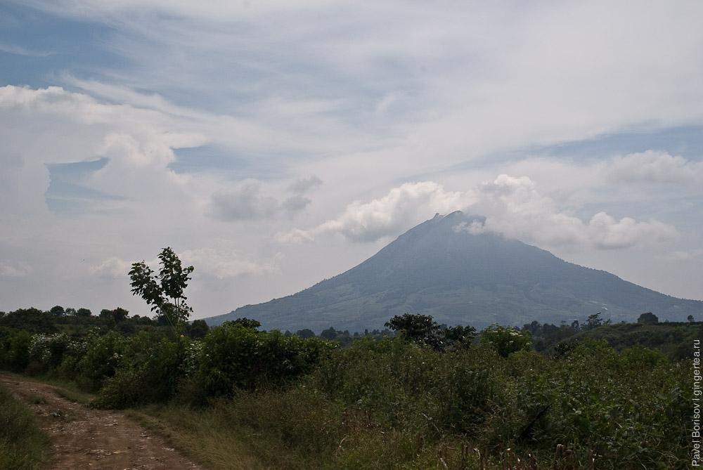 Как сделать чай на фумароле: вулканы Синабунг и Сибаяк