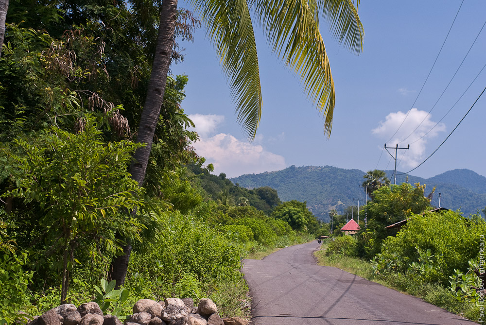 северо-флоресске шоссе, Flores Trans-Northern Highway