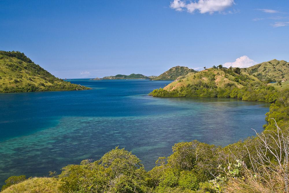 Бухта с коралловыми садами, a bay with coral gardens