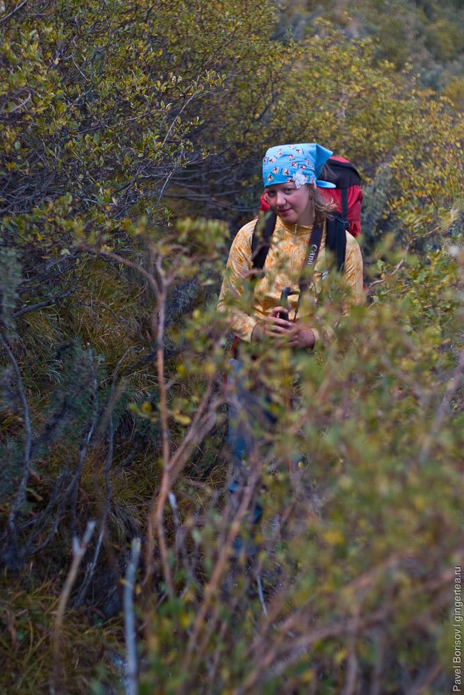 Пешком к Хан Тенгри и пику Победы по леднику Иныльчек