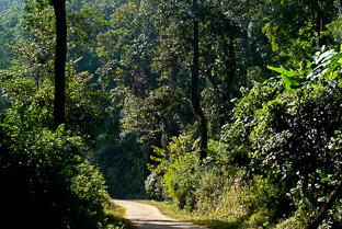 10 мифов о походах в тропиках