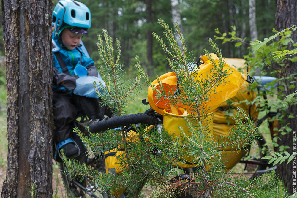 ребенок 2 года в велопоходе, участок Байкал - Хубсугул