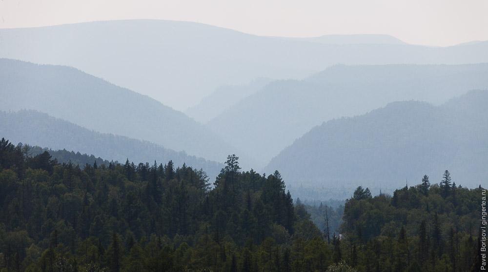 лес и горы в Бурятии