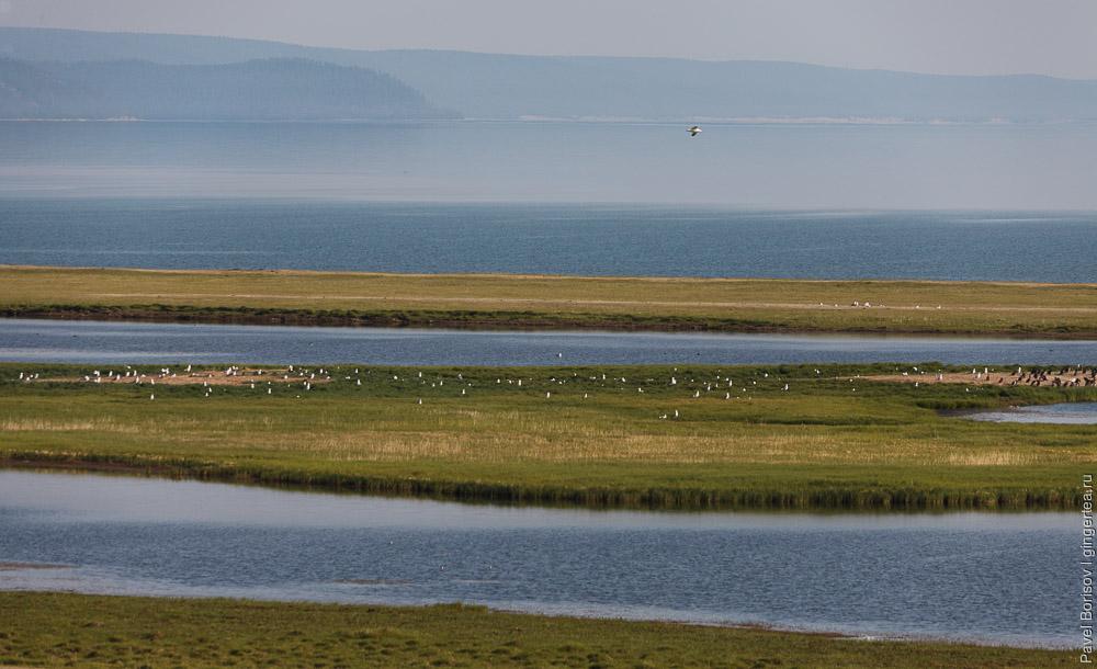 берегу озера Хубсугул