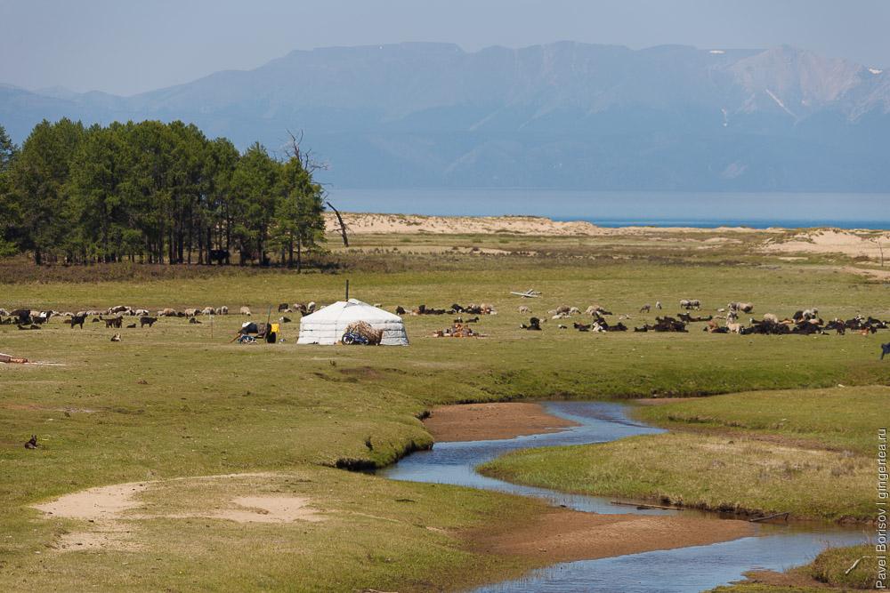 юрты на озере Хубсугул в Монголии