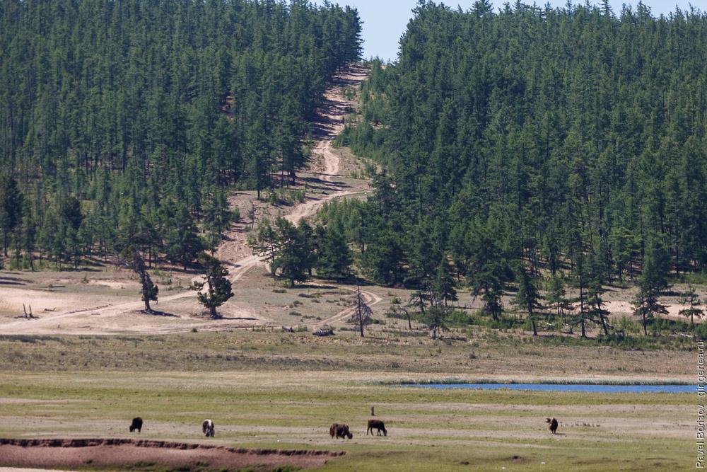 перевал на дороге по восточному берегу озера Хубсугул в Монголии