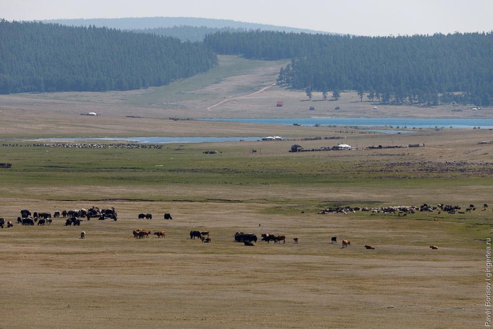 велопоход по восточному берегу озера Хубсугул в Монголии