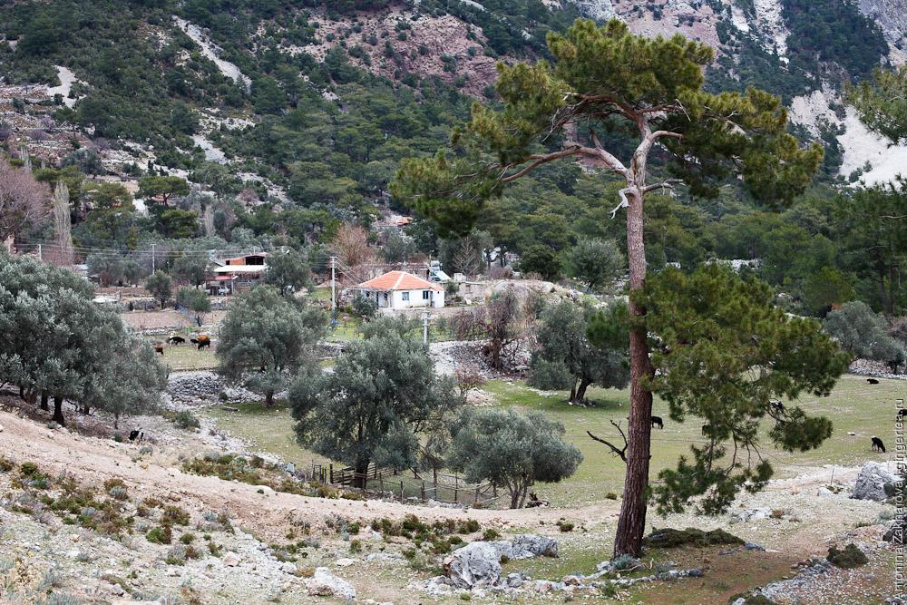 камни в окрестностях Кирме